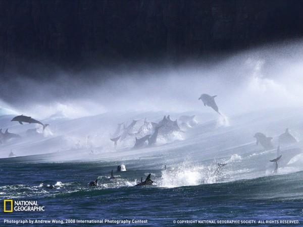 Fotografías espectaculares de National Geographic (1).