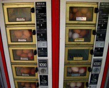 Máquinas expendedoras poco habituales *O* Huevos