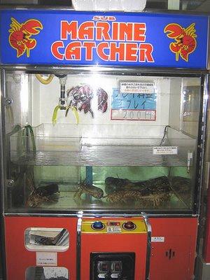 maquinas expendedoras (sorprendentes)