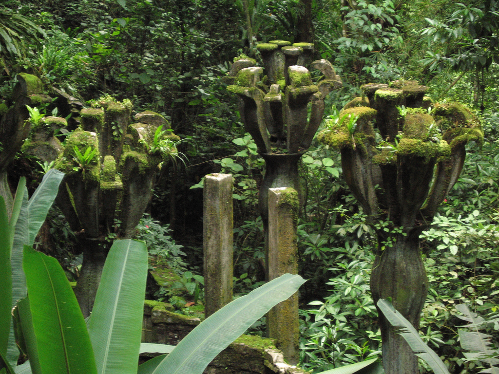 Maravillas del mundo las pozas de xilitla o casa del for Jardin xilitla