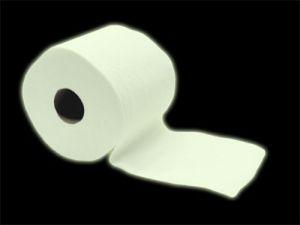 10 Curiosidades acerca del papel higiénico.