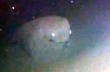 Extraña criatura filmada en las profundidades del mar en Japón