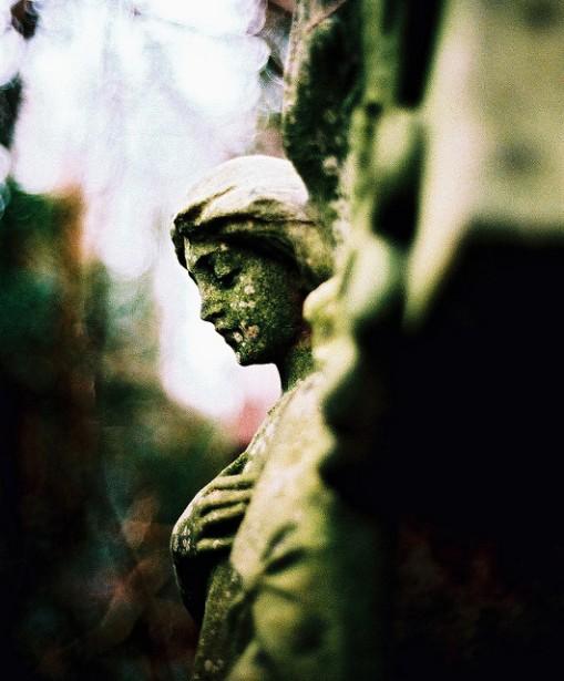 Cementerio de Abney Park, otro mundo en el centro de Londres. Abney-park-cemetery