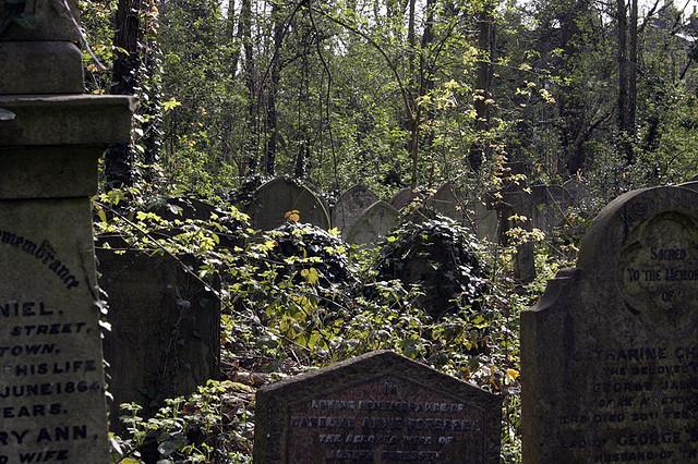 Cementerio jardines de las mercedes pasto for Cementerio jardin