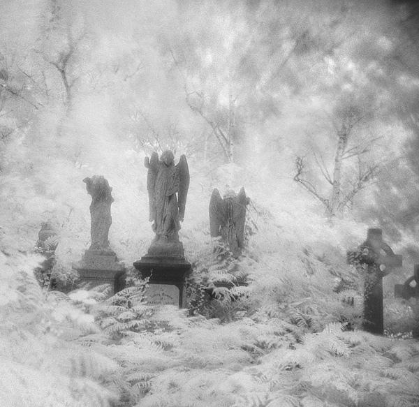 Cementerio de Abney Park, otro mundo en el centro de Londres.