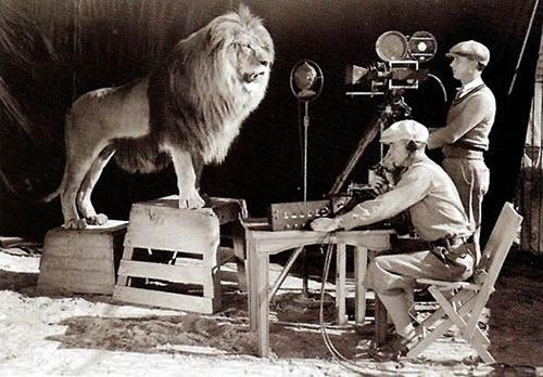 Resultado de imagen de leon del cine