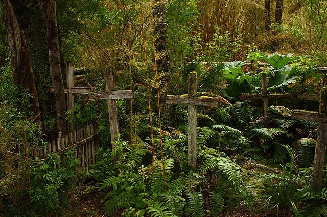El cementerio de la Isla de los muertos, en Chile.