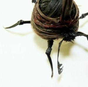 Pequeñas obras de arte hechas con pelo humano.