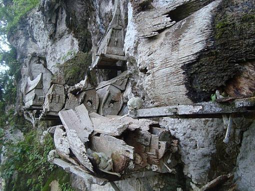 Los Toraja y los árboles de los niños muertos.-http://tejiendoelmundo.files.wordpress.com/2011/04/indonesia.jpg?w=510&h=382