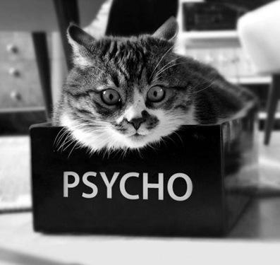 ¿Su vecino es un psicópata?