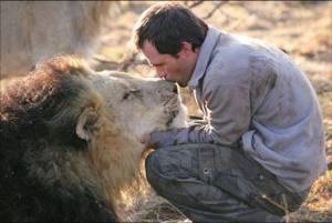 Las compañías peligrosas de Kevin Richardson, el hombre amado por los leones