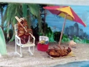 El museo de las cucarachas de Texas