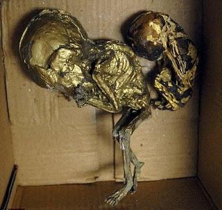 feto momificado en pan de oro